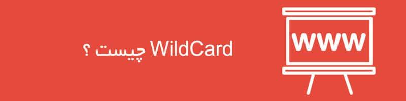 WildCard چیست ؟